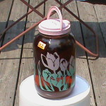 Sun Brewed Iced Tea