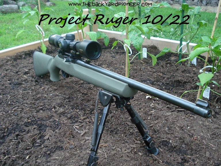 Upgraded Ruger 10/22