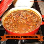 Quick and Easy Venison Chili