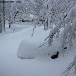 Setting the Record Straight on Winter Storm Nemo: A Preppers Defense