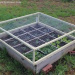 Keep critters out of your raised beds