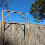How to Build a Trellis for Vertical Gardening