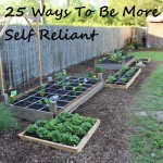 25 Ways You Can Be More Self Reliant Today