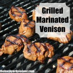 Grilled Marinated Venison Backstrap