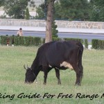 Cooking guide for free range meat