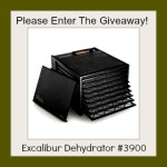Excalibur 3900 Food Dehydrator Giveaway!