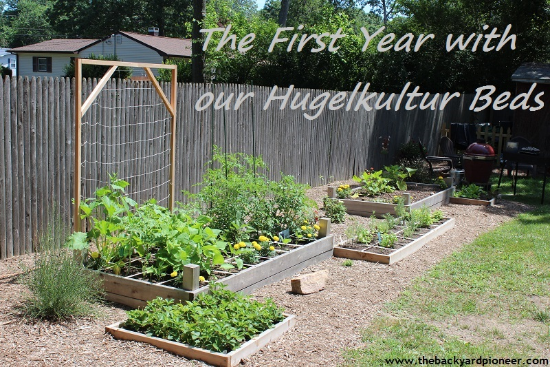 The First Year With Our Hugelkultur Beds