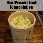 How I Preserve Food: Fermentation