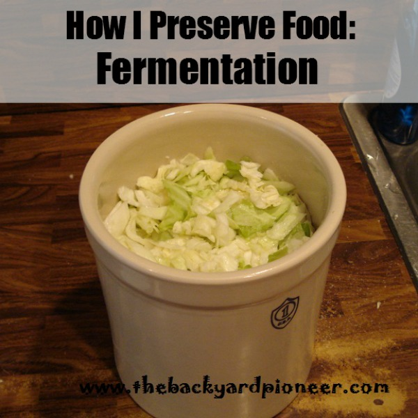 Preserving With Fermentation