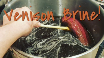 Quick And Easy Venison Brine